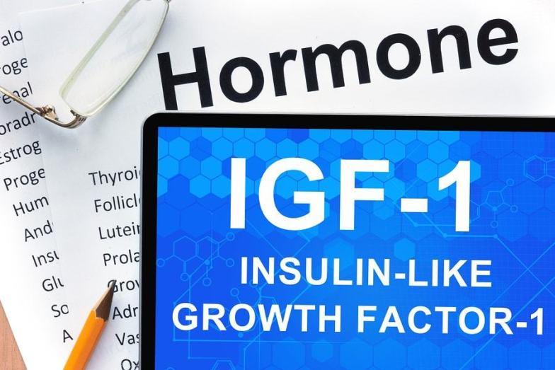 Insulin-like growth factor-1 long r 3