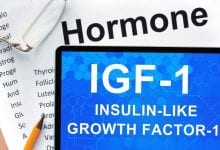 Insulin-like growth factor-1 long r 3