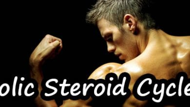 Steroid Cycle Safety